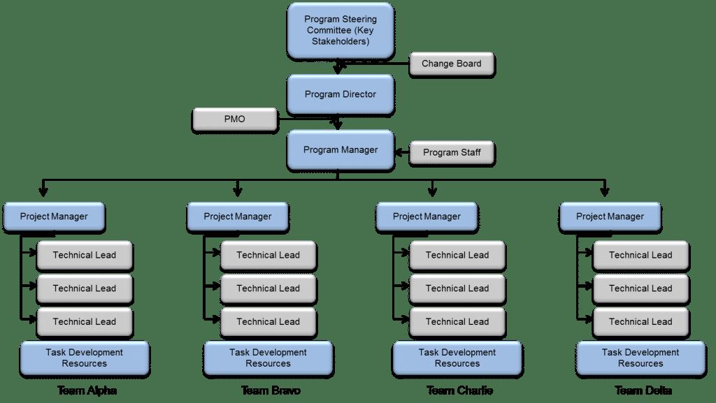 Program Management Distinctions  Written By Tom Flynn  P E