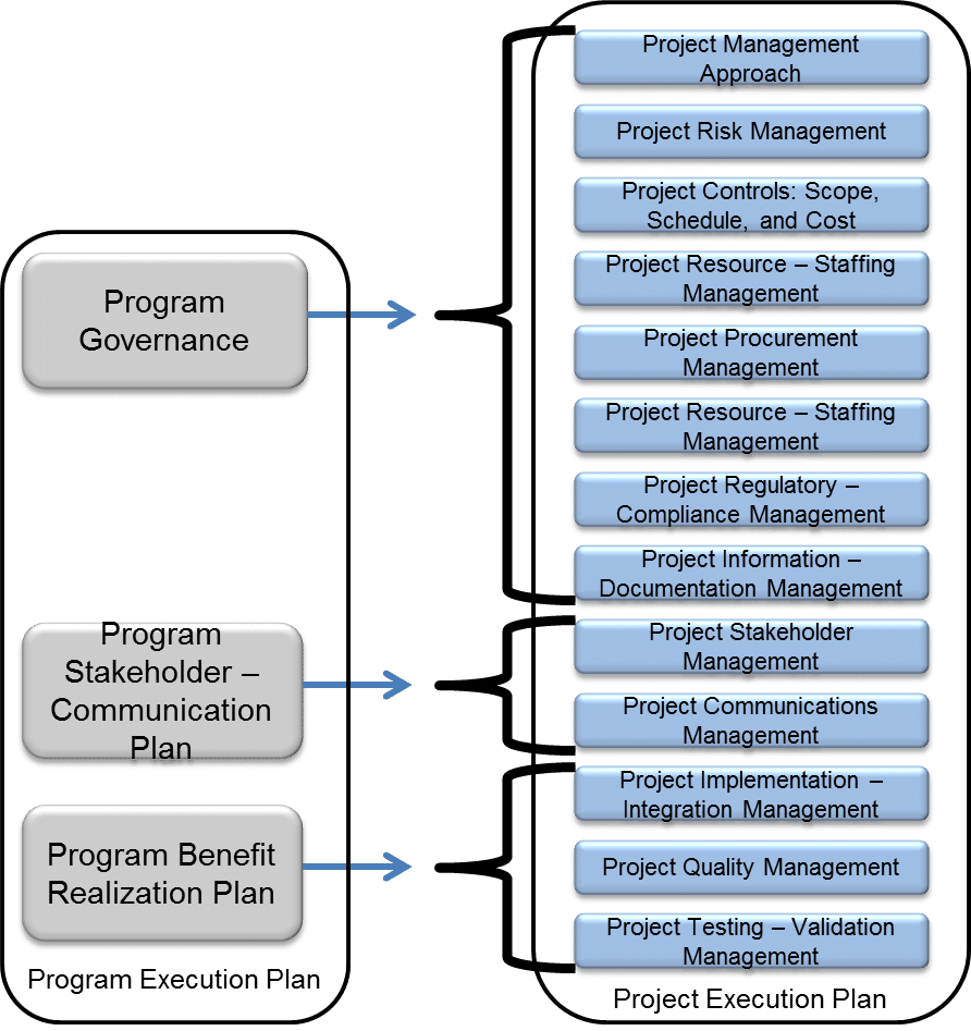 Figure 2: Program and Project Execution Plans